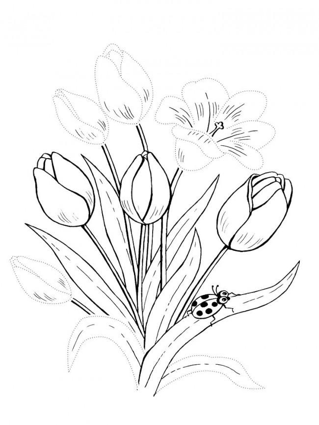 рисунки весенних цветов технические характеристики дизайн