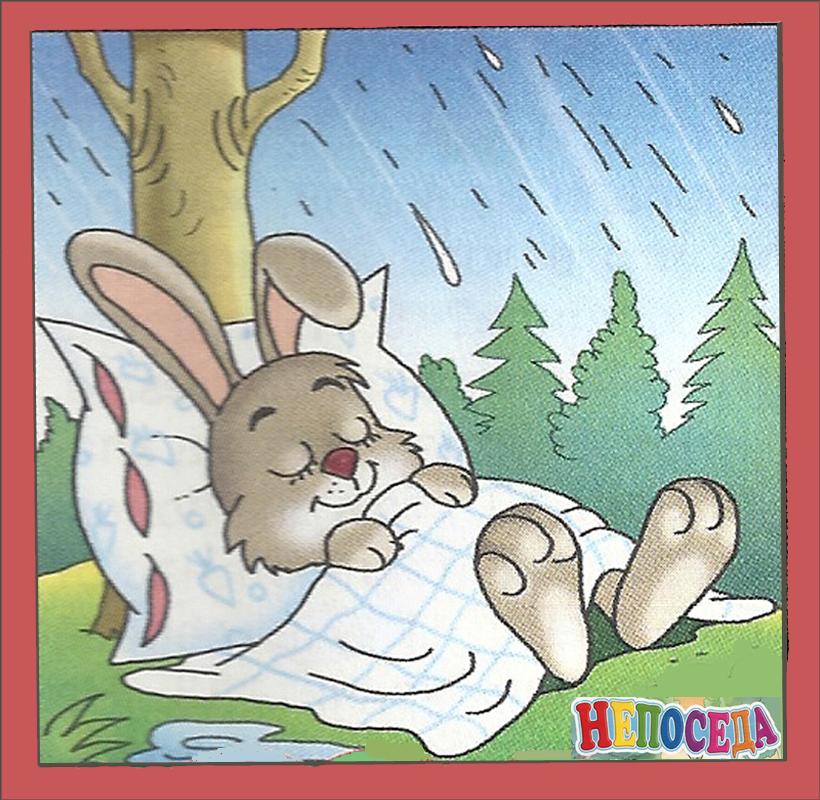 считают, история в картинках про зайцев нет давно