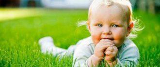 Этапы детства, или путь взросления ребенка