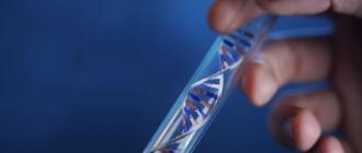 тест ДНК