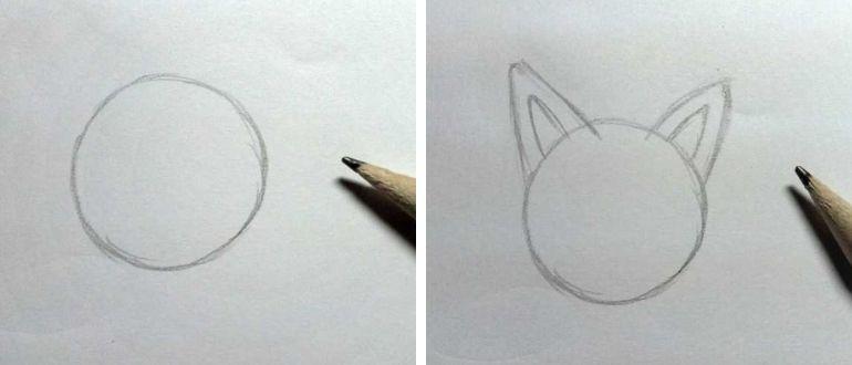 как нарисовать щенка легко и просто