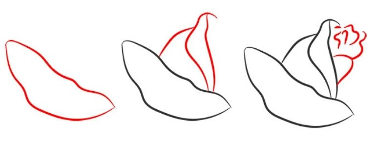 как нарисовать розу ребенку