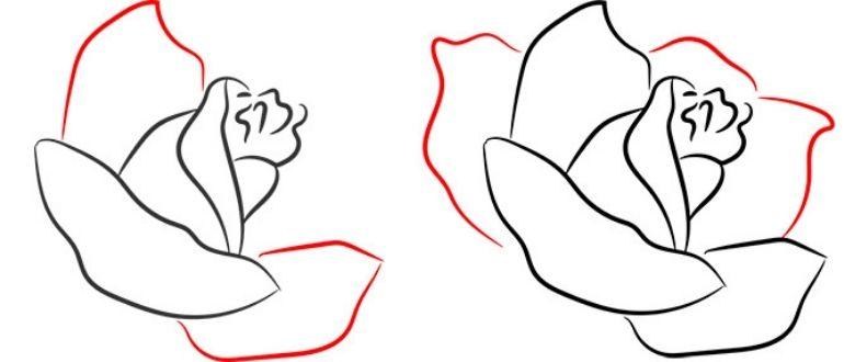 как нарисовать розу пошагово