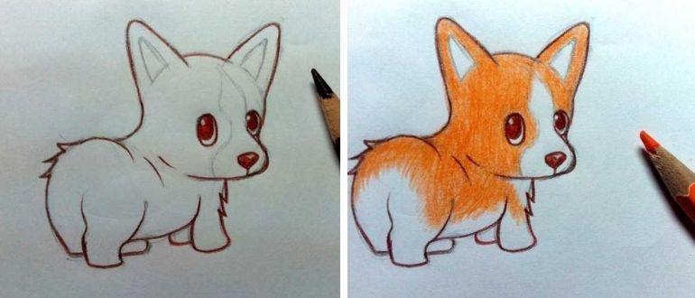 нарисовать собаку для детей