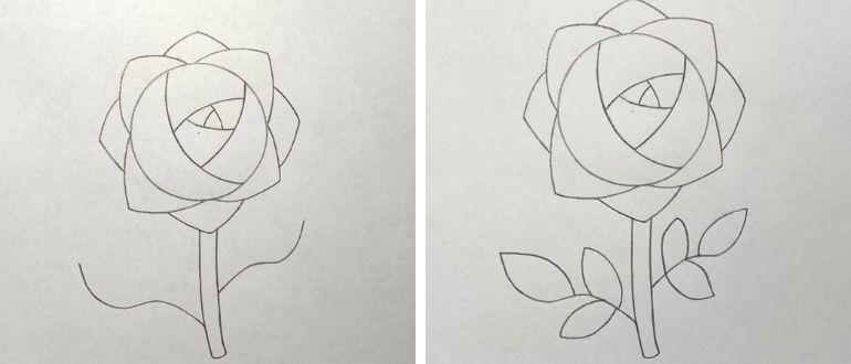 нарисовать розу поэтапно