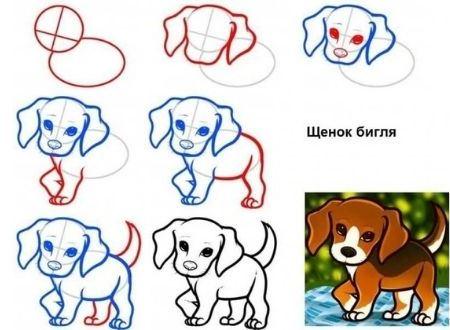 как легко нарисовать собаку