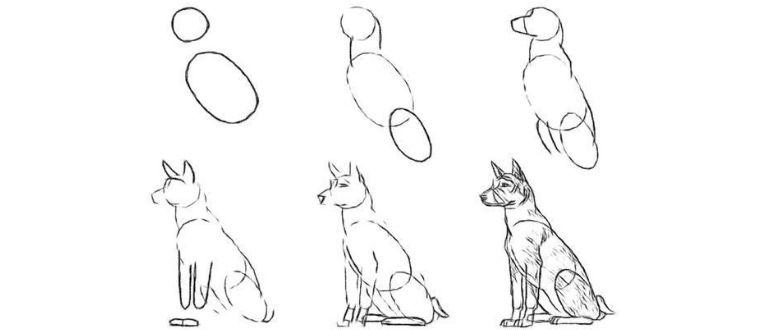 как рисовать собаку для детей