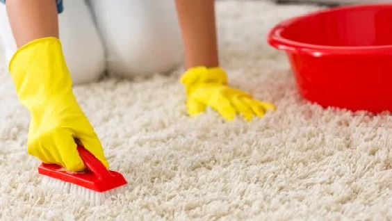 Как обрабатывается ковровое покрытие
